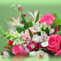 roses_bouquets_447012.jpg
